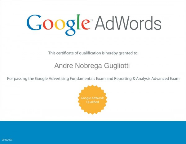 Google Adwords Reporting And Analysis - imagem: andregugliotti.com.br