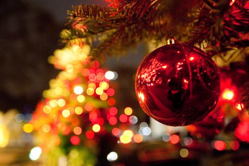 Árvore de Natal - imagem: Paul Mansfield - Flickr